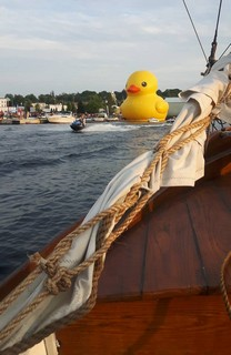 Giant rubber duck tall ship